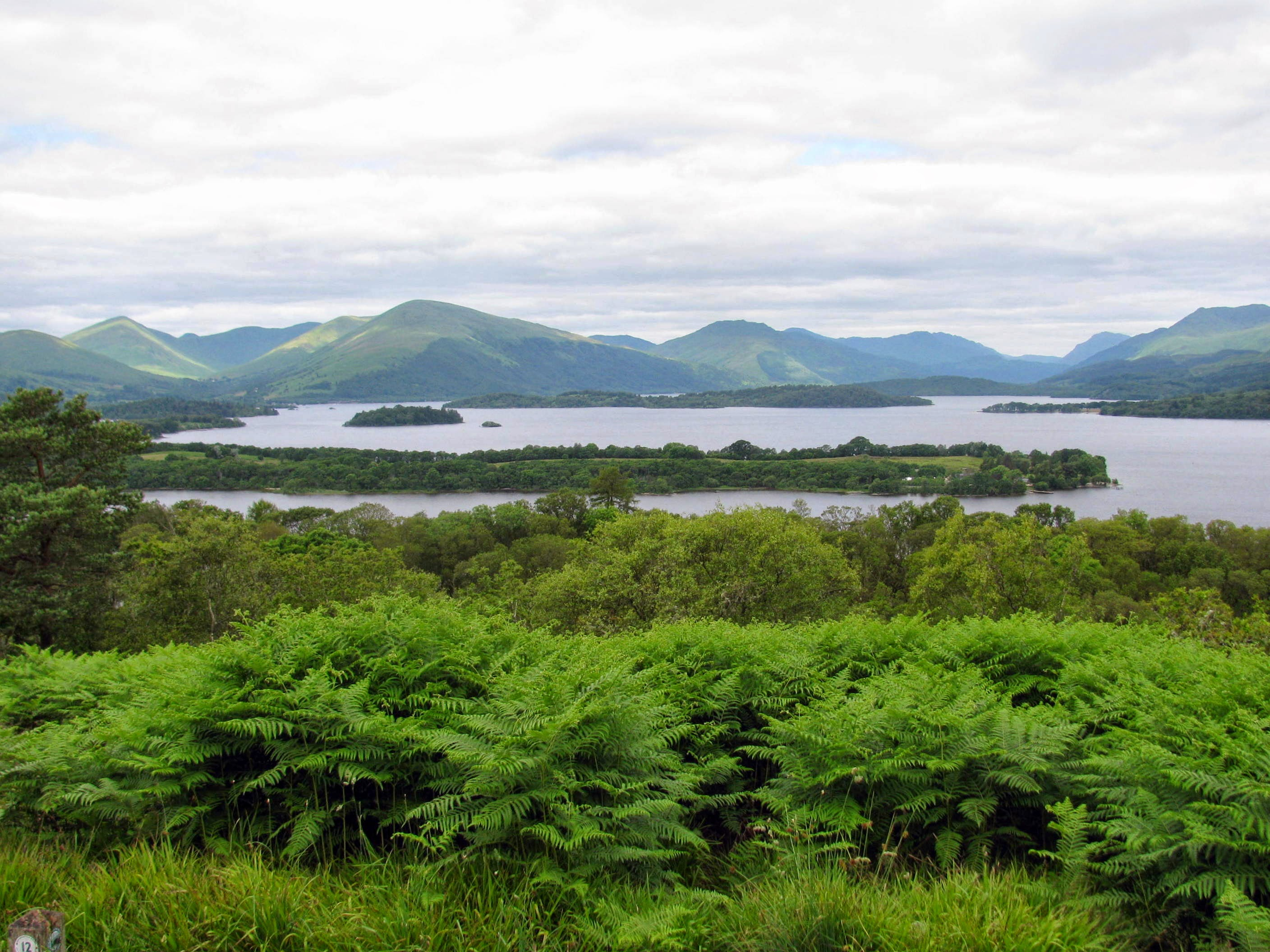 2014_View_of_Loch_Lomond_from_top_of_Inch.jpg